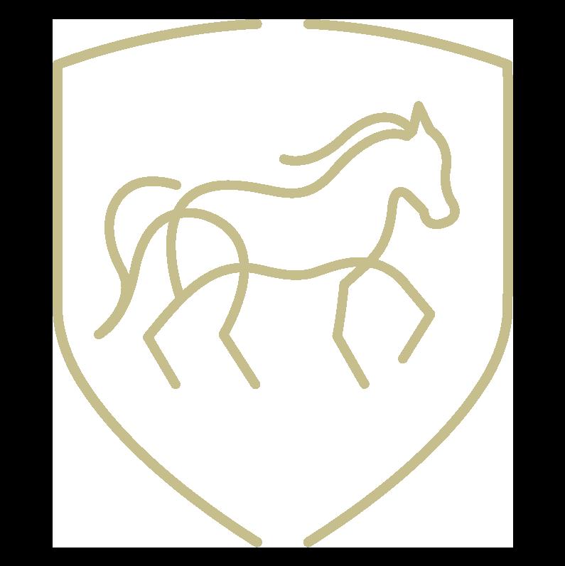 Fysiotherapie voor uw paard